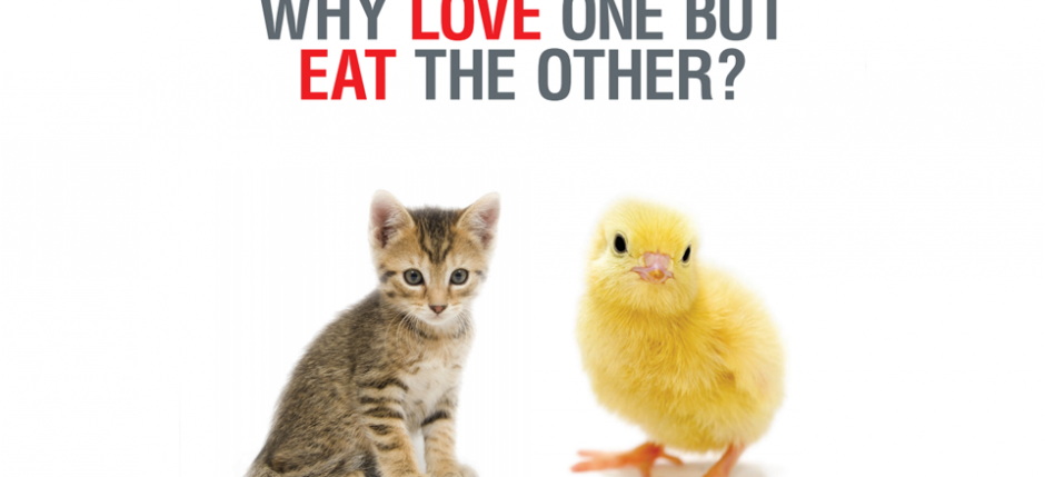 why-love-one-but-eat-the-other1